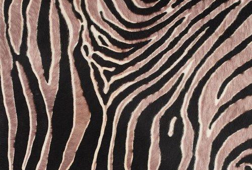 horsy-9017-white-zebra-tasmania-nuance-malva (Custom)