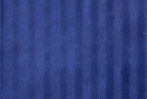 horsy-spigatino-electric-blue (Custom)
